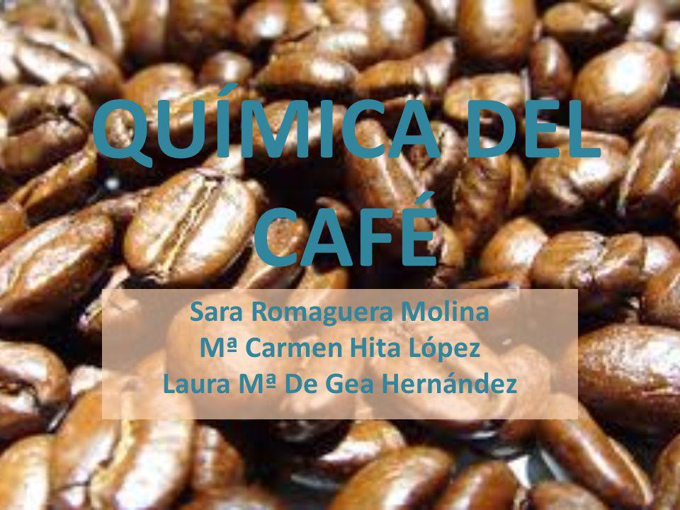 Sara Romaguera Molina Mª Carmen Hita López Laura Mª De Gea Hernández