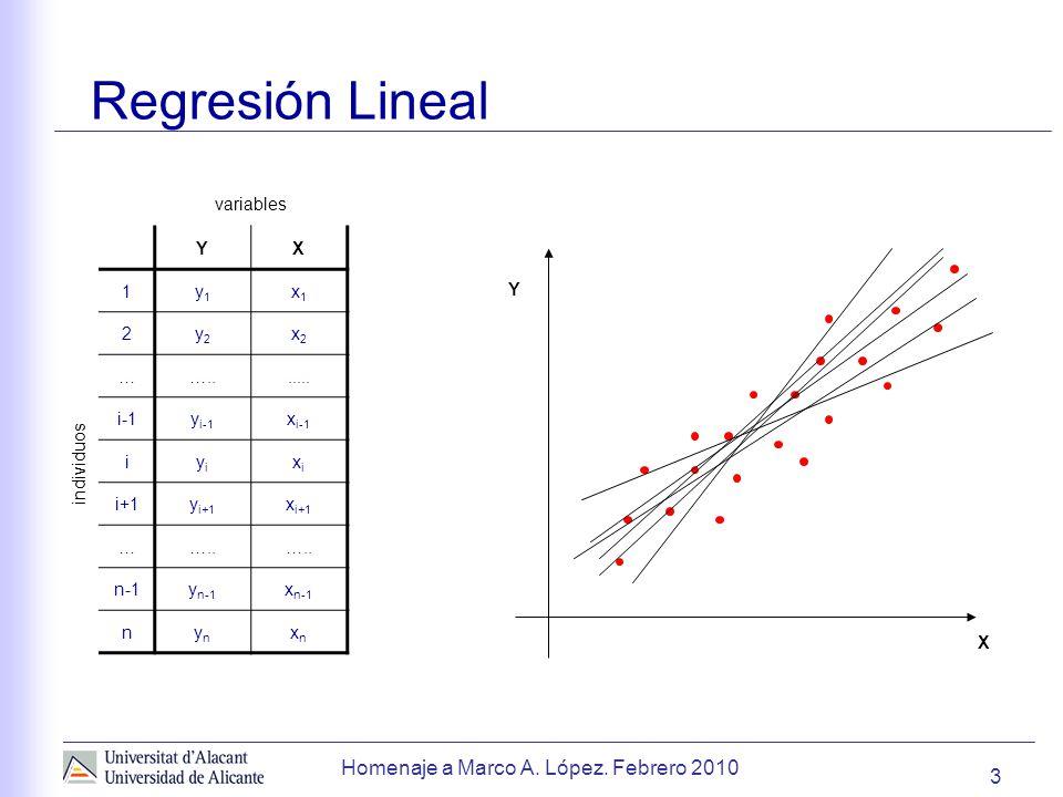 Regresión Lineal Homenaje a Marco A. López. Febrero 2010 variables Y X