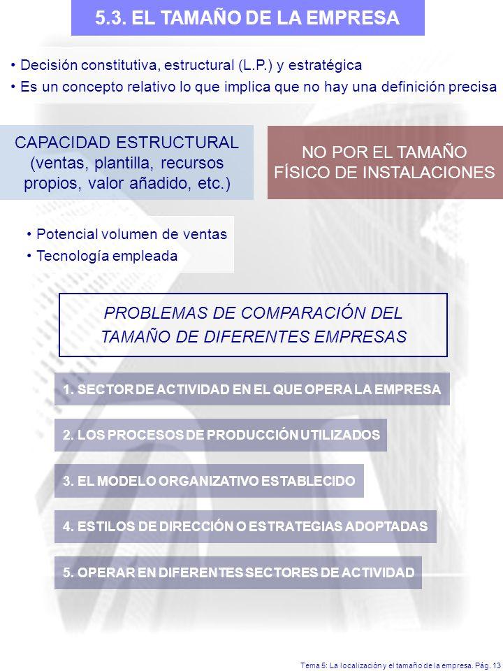 5.3. EL TAMAÑO DE LA EMPRESA CAPACIDAD ESTRUCTURAL NO POR EL TAMAÑO
