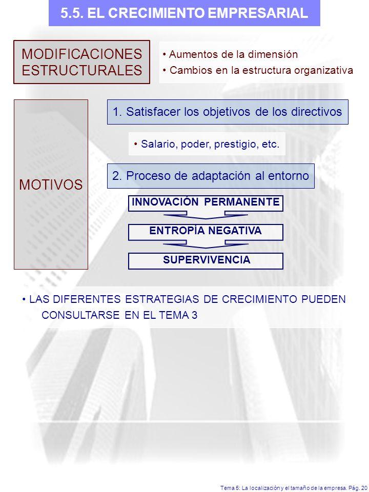 5.5. EL CRECIMIENTO EMPRESARIAL INNOVACIÓN PERMANENTE