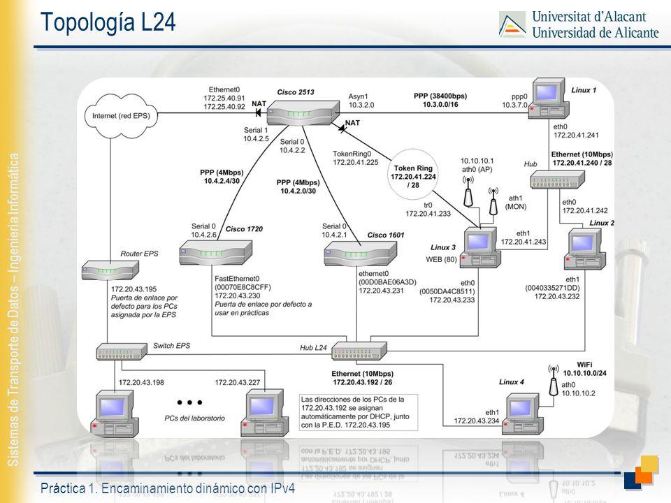 Topología L24