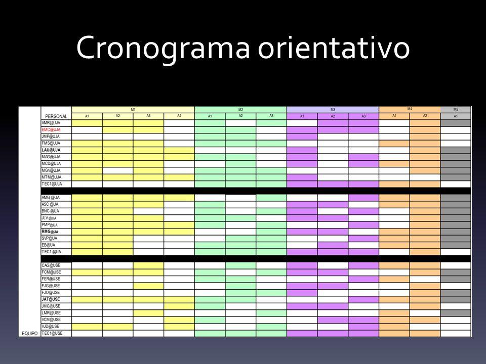 Cronograma orientativo