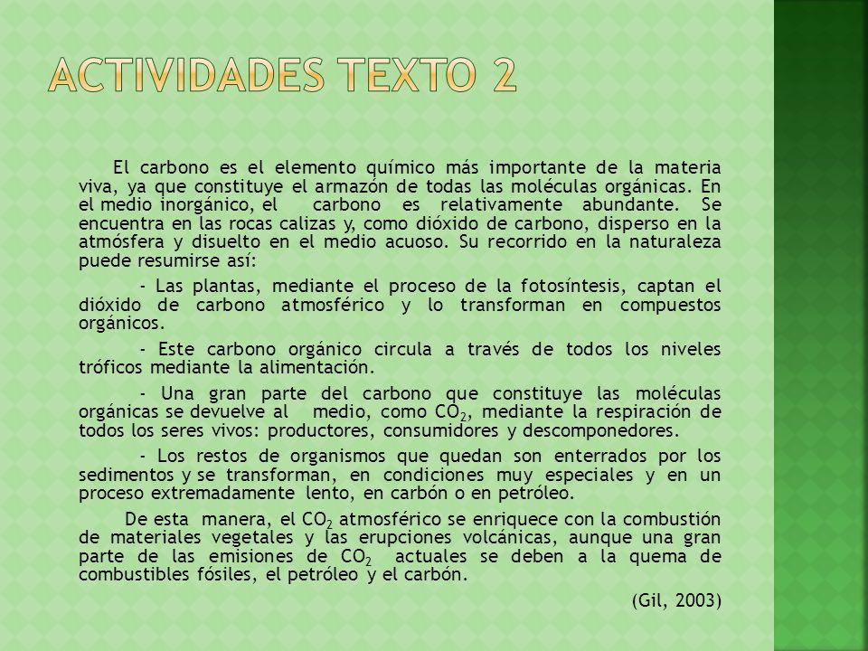 ACTIVIDADES TEXTO 2