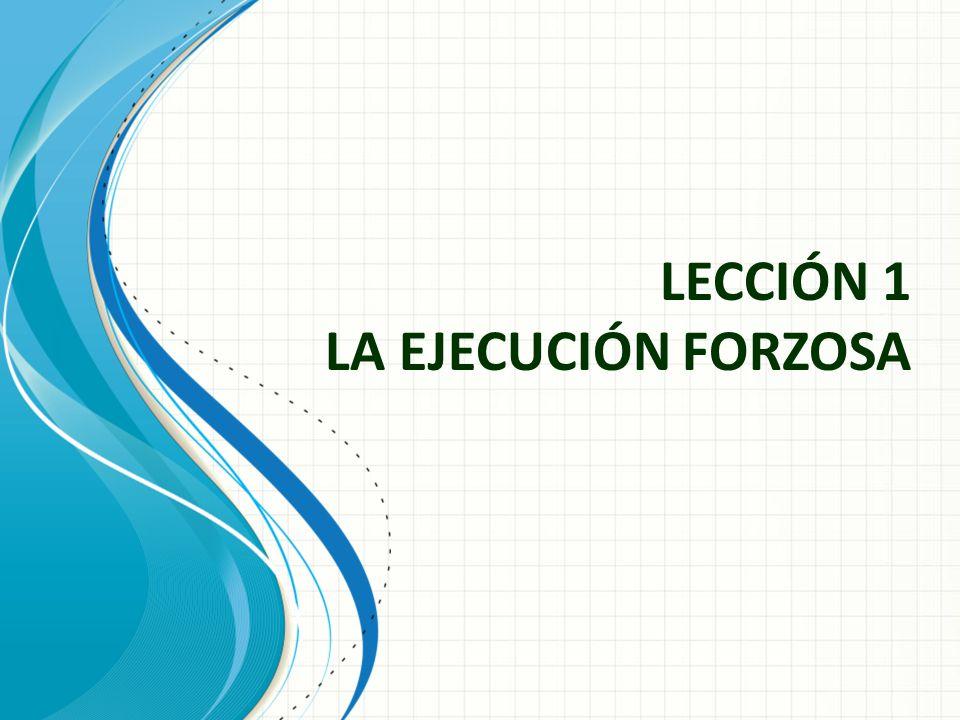 LECCIÓN 1 LA EJECUCIÓN FORZOSA