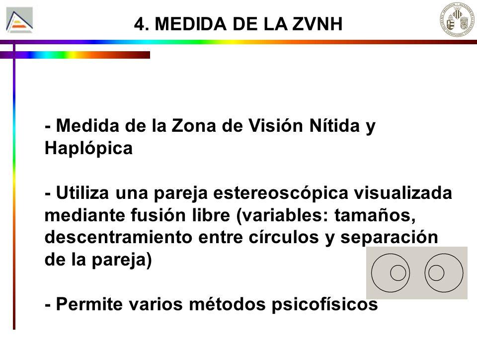4. MEDIDA DE LA ZVNH