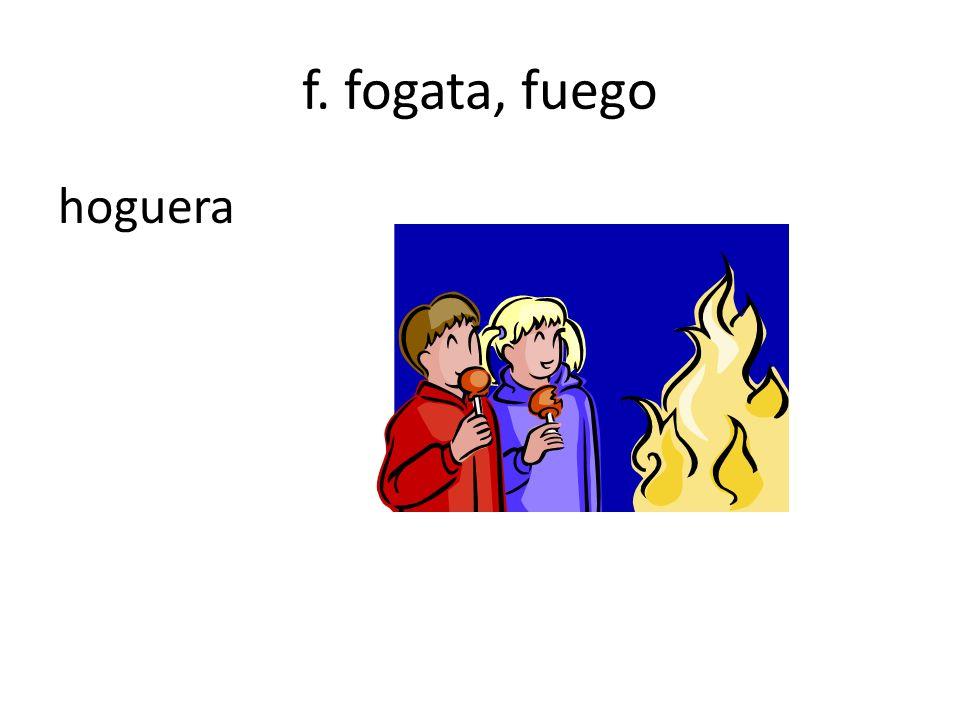 f. fogata, fuego hoguera
