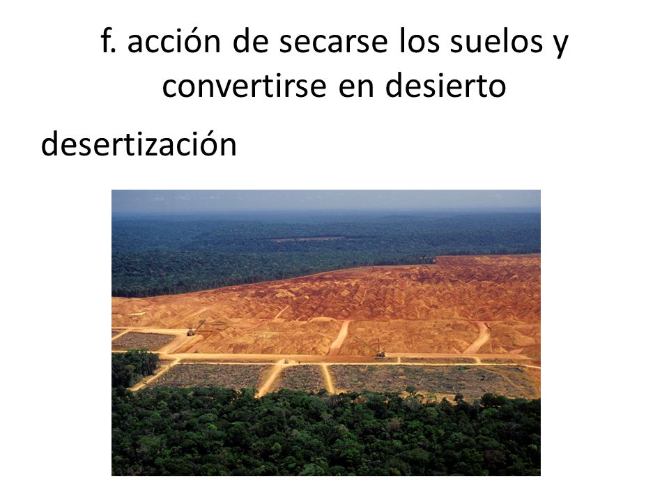 f. acción de secarse los suelos y convertirse en desierto