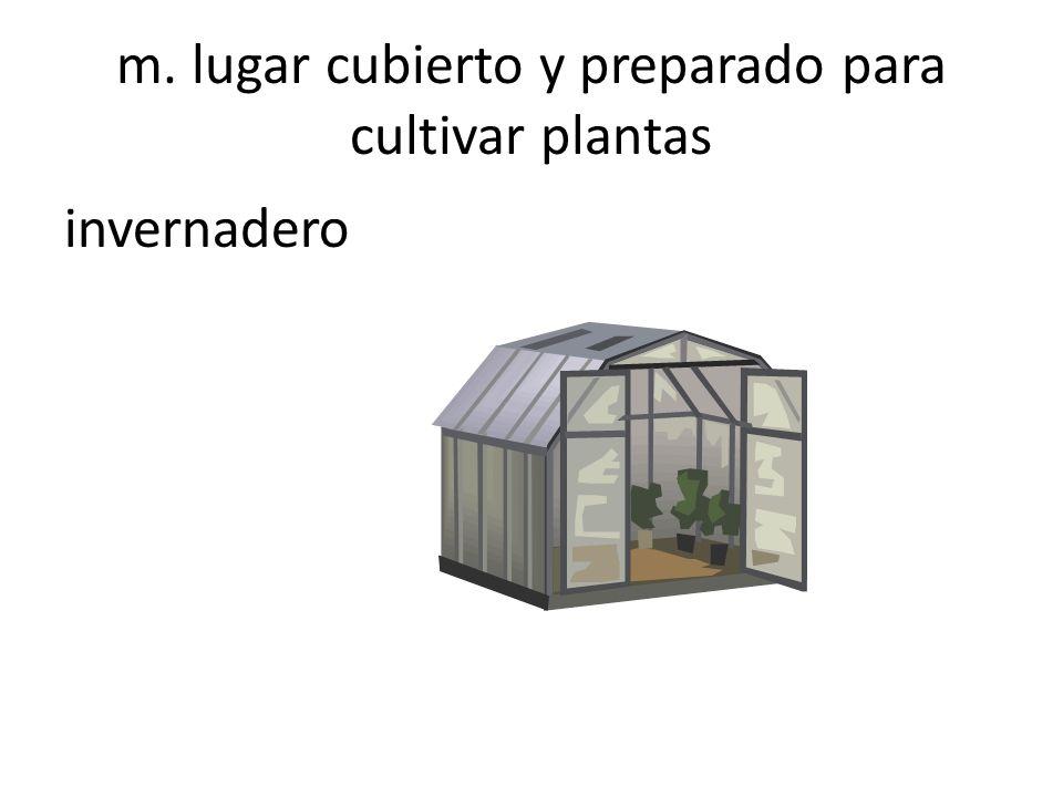 m. lugar cubierto y preparado para cultivar plantas