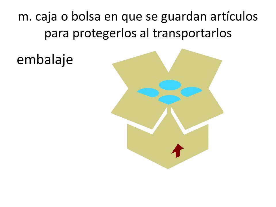 m. caja o bolsa en que se guardan artículos para protegerlos al transportarlos