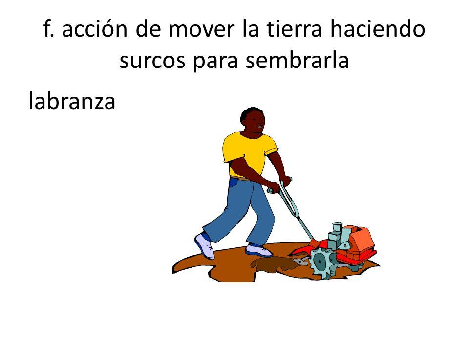 f. acción de mover la tierra haciendo surcos para sembrarla