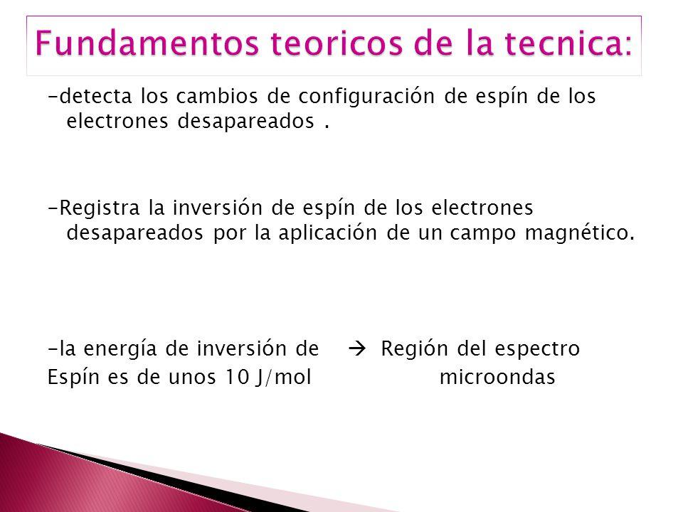 Fundamentos teoricos de la tecnica:
