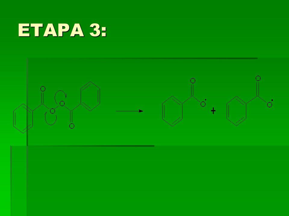 ETAPA 3: