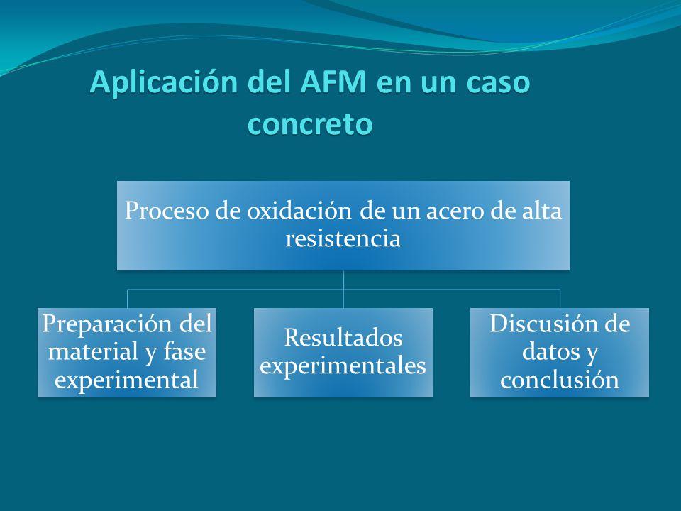 Aplicación del AFM en un caso concreto