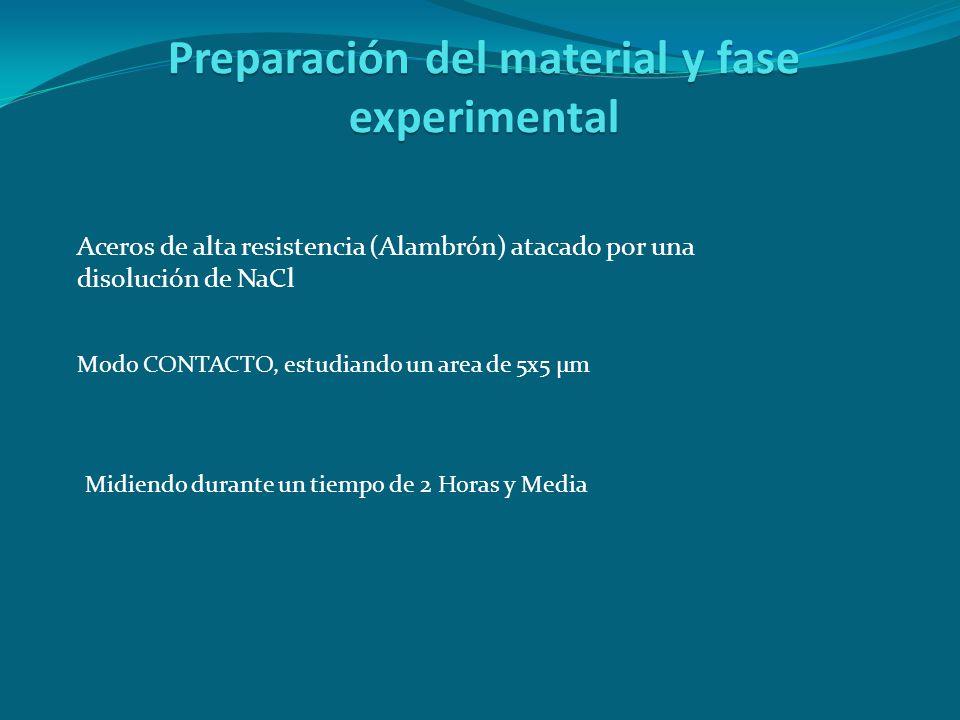 Preparación del material y fase experimental