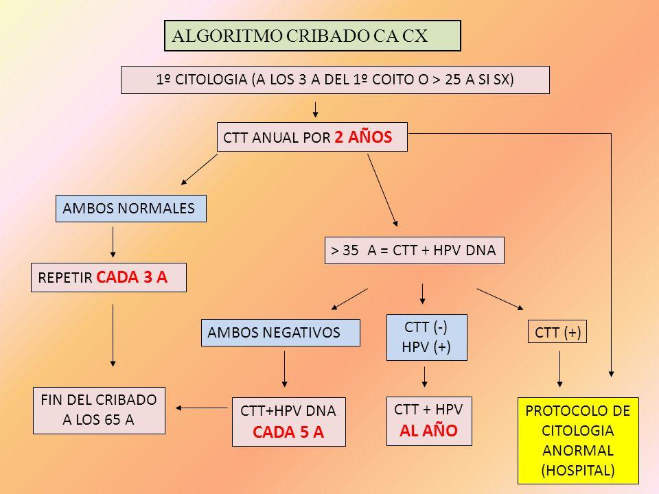 1º CITOLOGIA (A LOS 3 A DEL 1º COITO O > 25 A SI SX)