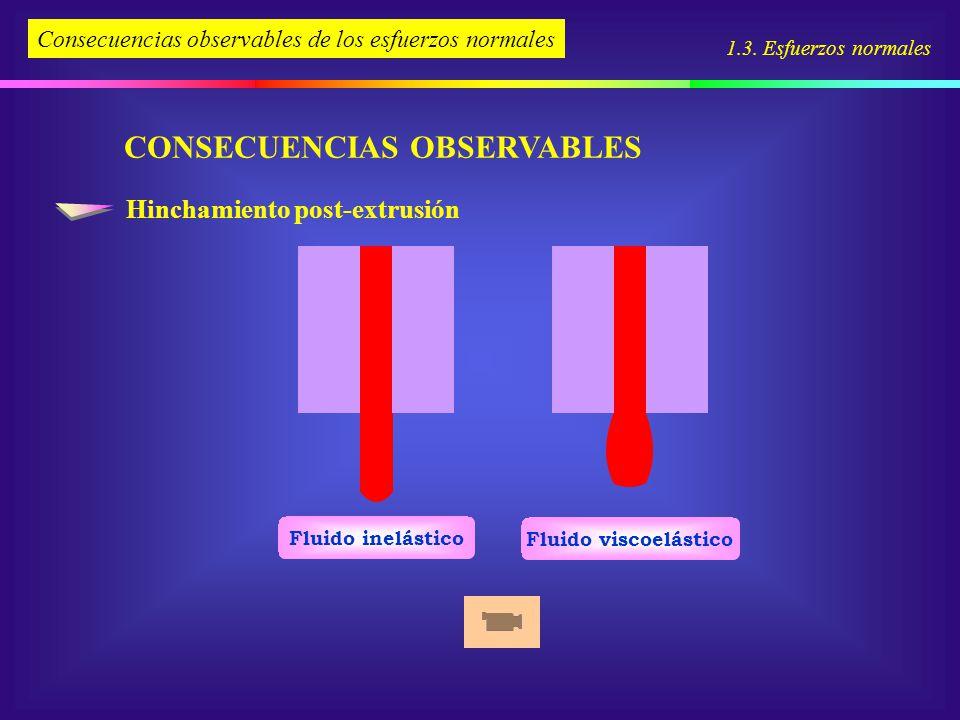 CONSECUENCIAS OBSERVABLES