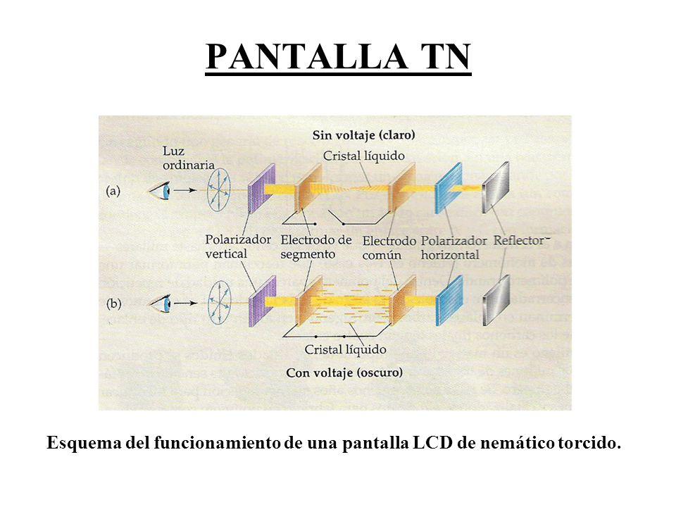 PANTALLA TN Esquema del funcionamiento de una pantalla LCD de nemático torcido.