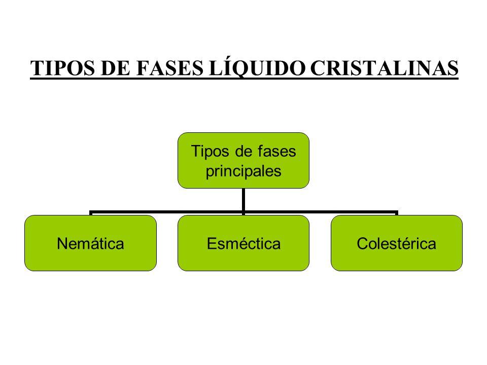 TIPOS DE FASES LÍQUIDO CRISTALINAS