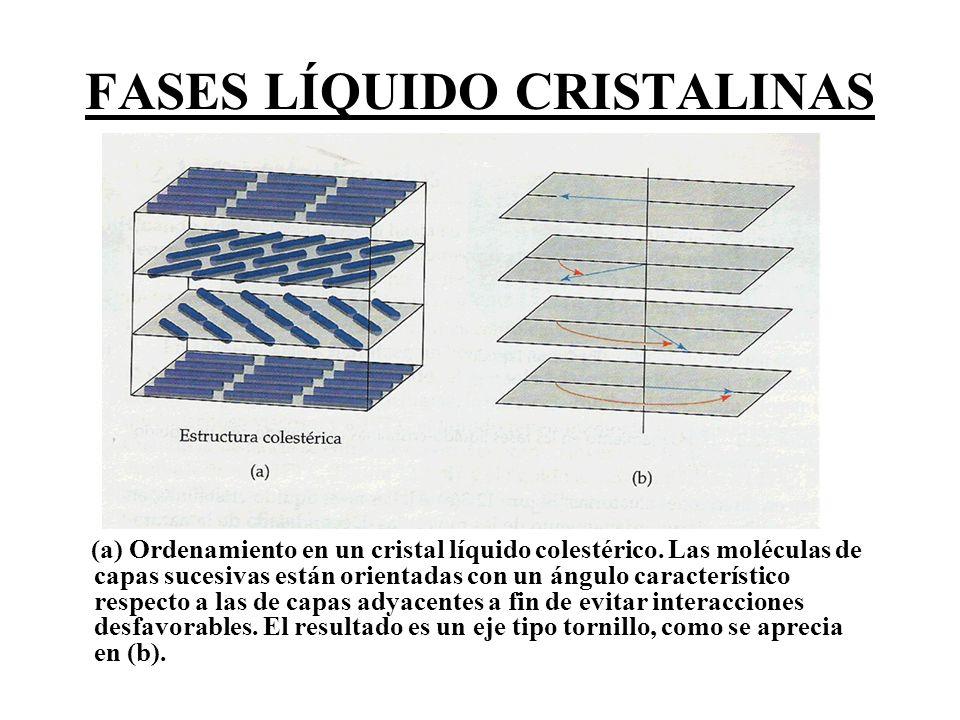 FASES LÍQUIDO CRISTALINAS