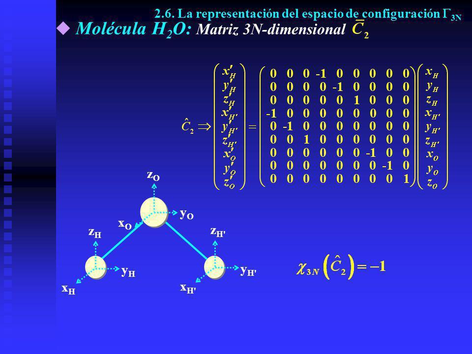Molécula H2O: Matriz 3N-dimensional