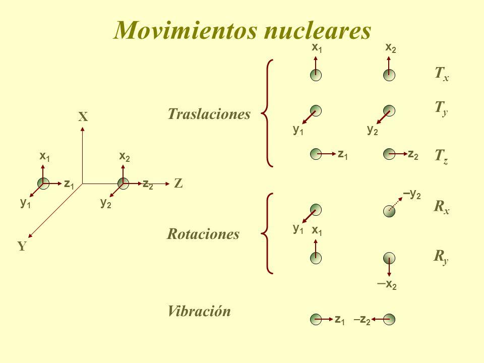 Movimientos nucleares