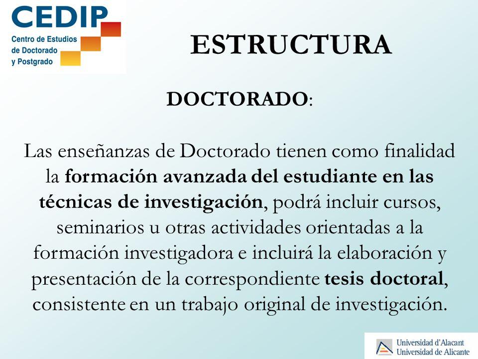 ESTRUCTURA DOCTORADO: