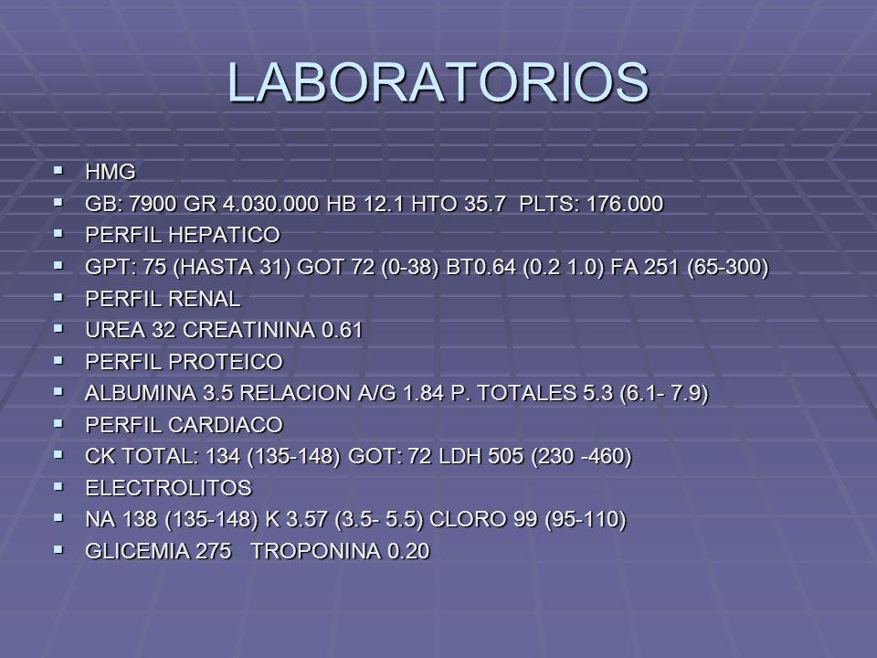 LABORATORIOS HMG GB: 7900 GR 4.030.000 HB 12.1 HTO 35.7 PLTS: 176.000