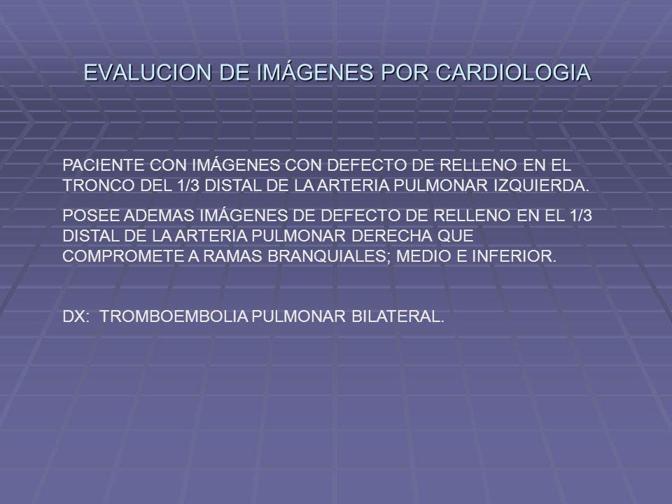 EVALUCION DE IMÁGENES POR CARDIOLOGIA