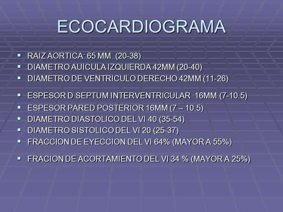 ECOCARDIOGRAMA RAIZ AORTICA: 65 MM (20-38)