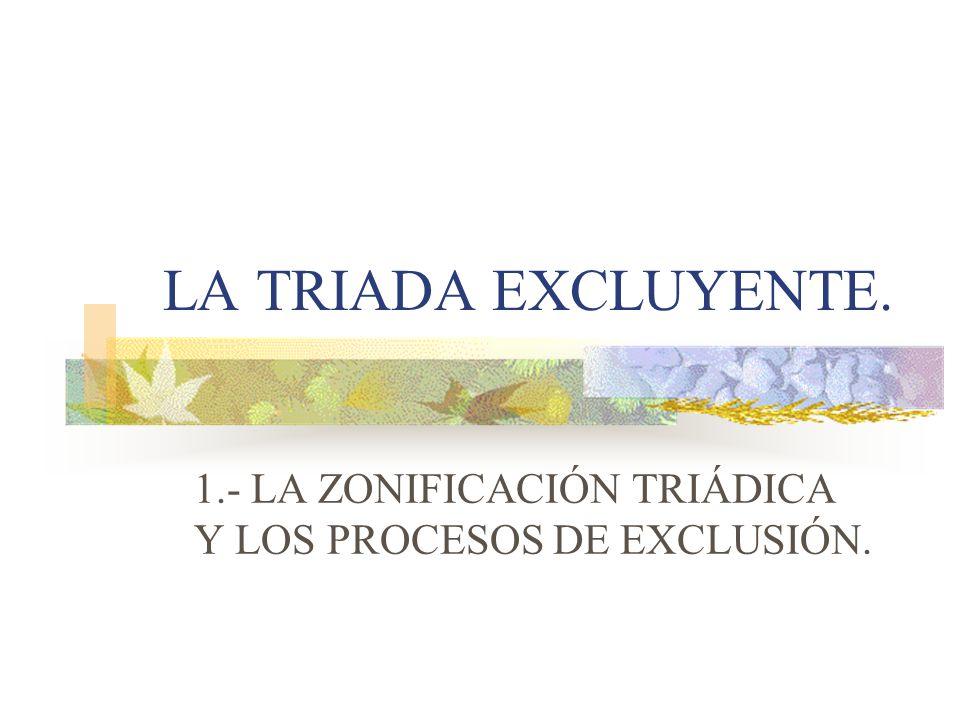 1.- LA ZONIFICACIÓN TRIÁDICA Y LOS PROCESOS DE EXCLUSIÓN.