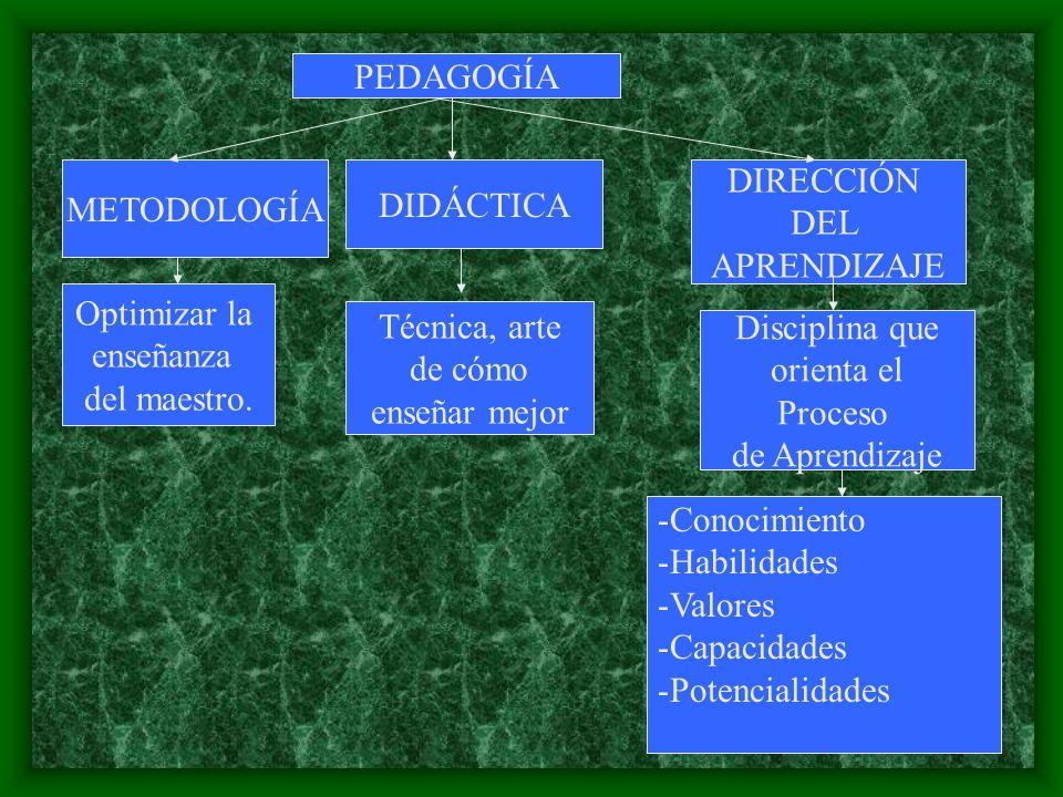 PEDAGOGÍA METODOLOGÍA. DIDÁCTICA. DIRECCIÓN. DEL. APRENDIZAJE. Optimizar la. enseñanza. del maestro.