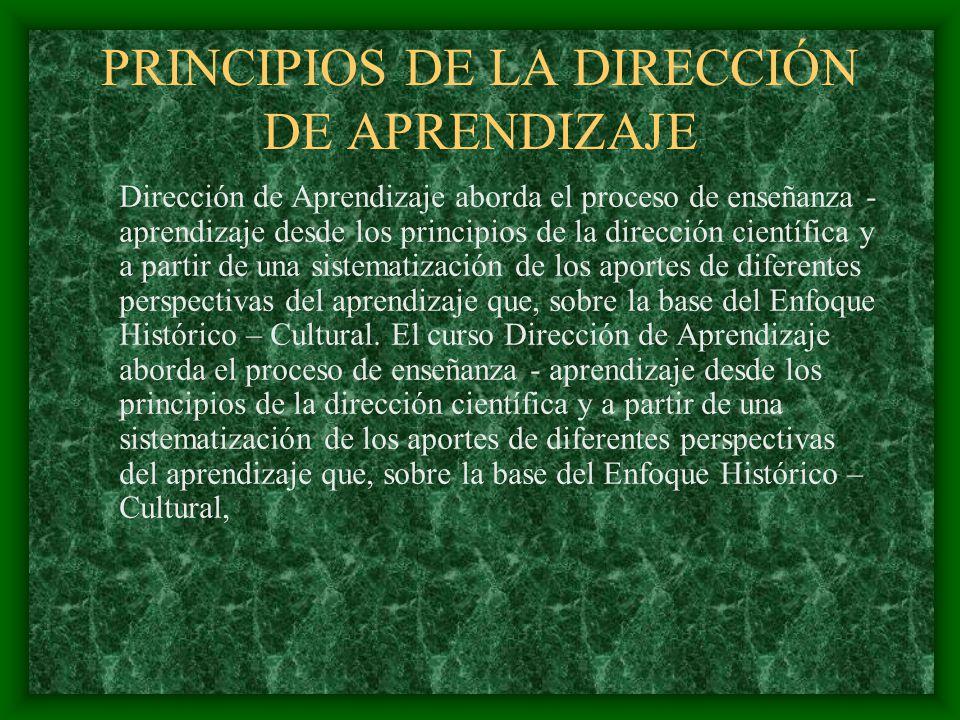 PRINCIPIOS DE LA DIRECCIÓN DE APRENDIZAJE