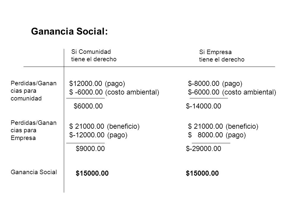 Ganancia Social: $12000.00 (pago) $ -6000.00 (costo ambiental)