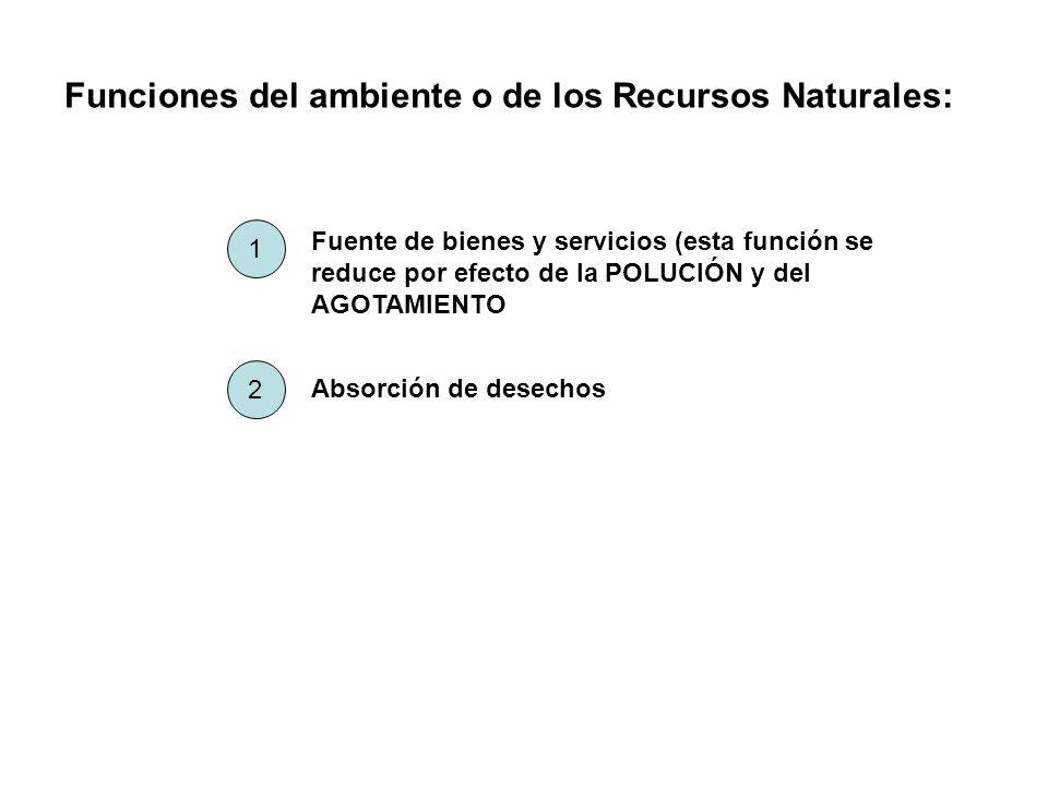 Funciones del ambiente o de los Recursos Naturales: