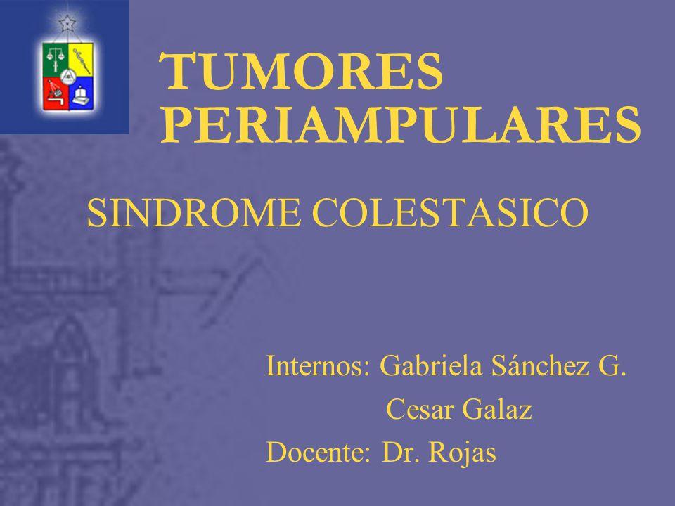 Internos: Gabriela Sánchez G. Cesar Galaz Docente: Dr. Rojas