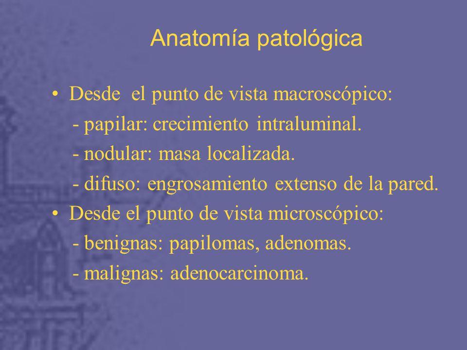Anatomía patológica Desde el punto de vista macroscópico: