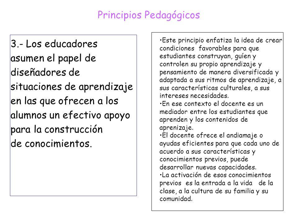 Principios Pedagógicos 3