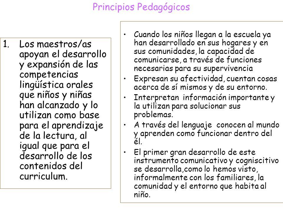 principios pedaggicos