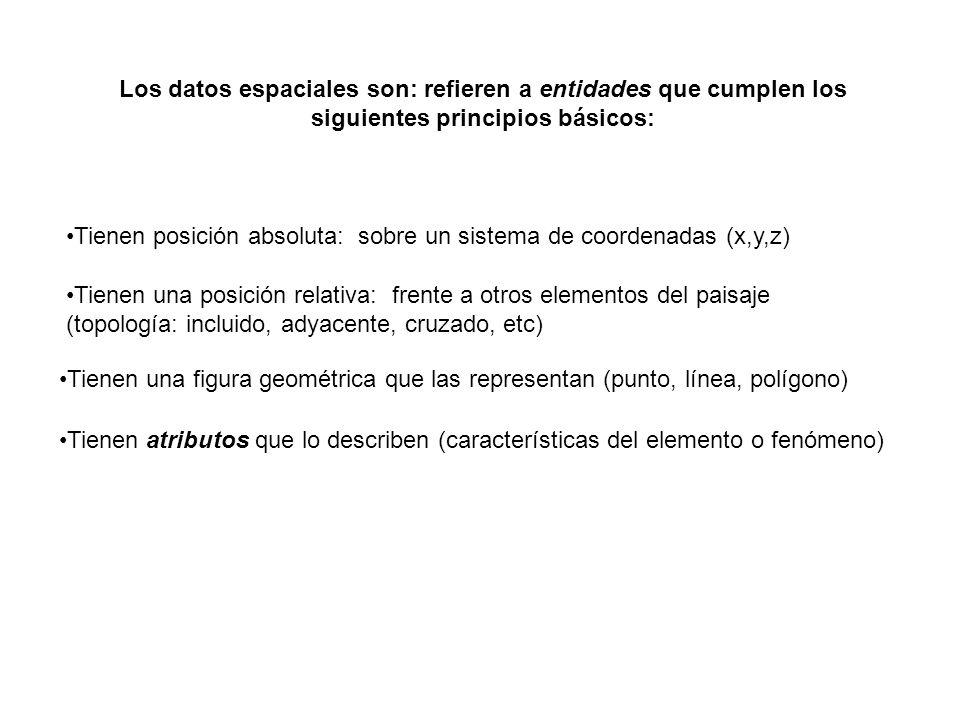 Los datos espaciales son: refieren a entidades que cumplen los siguientes principios básicos: