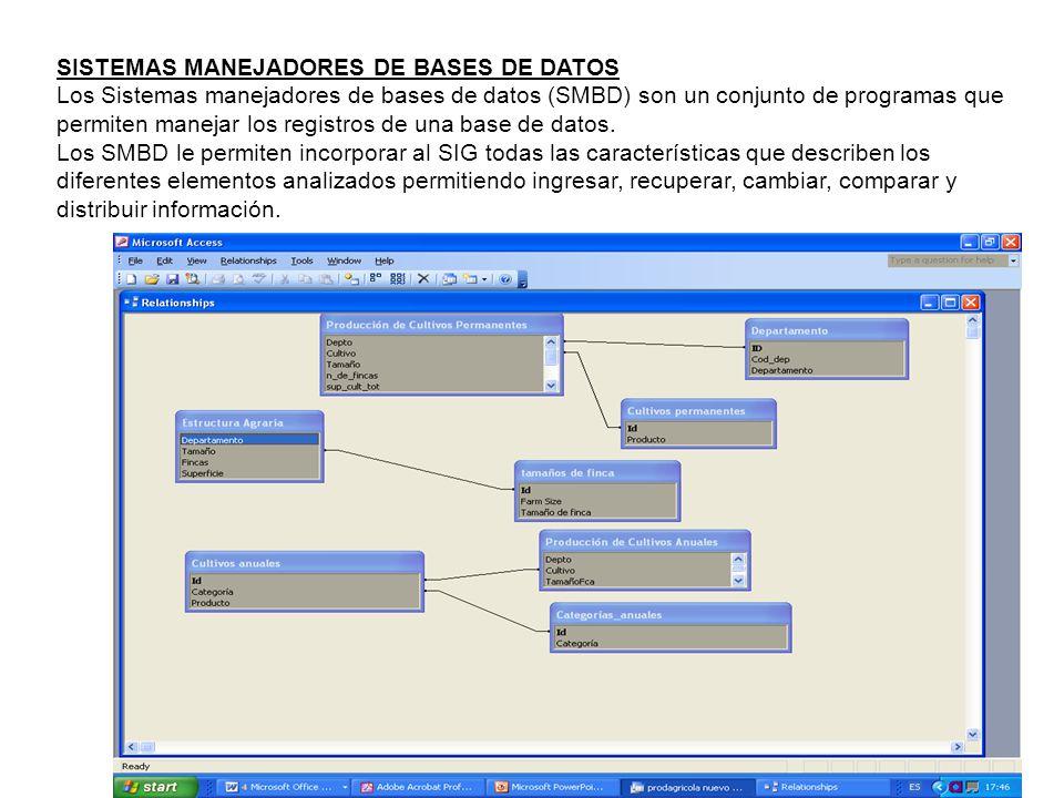 SISTEMAS MANEJADORES DE BASES DE DATOS
