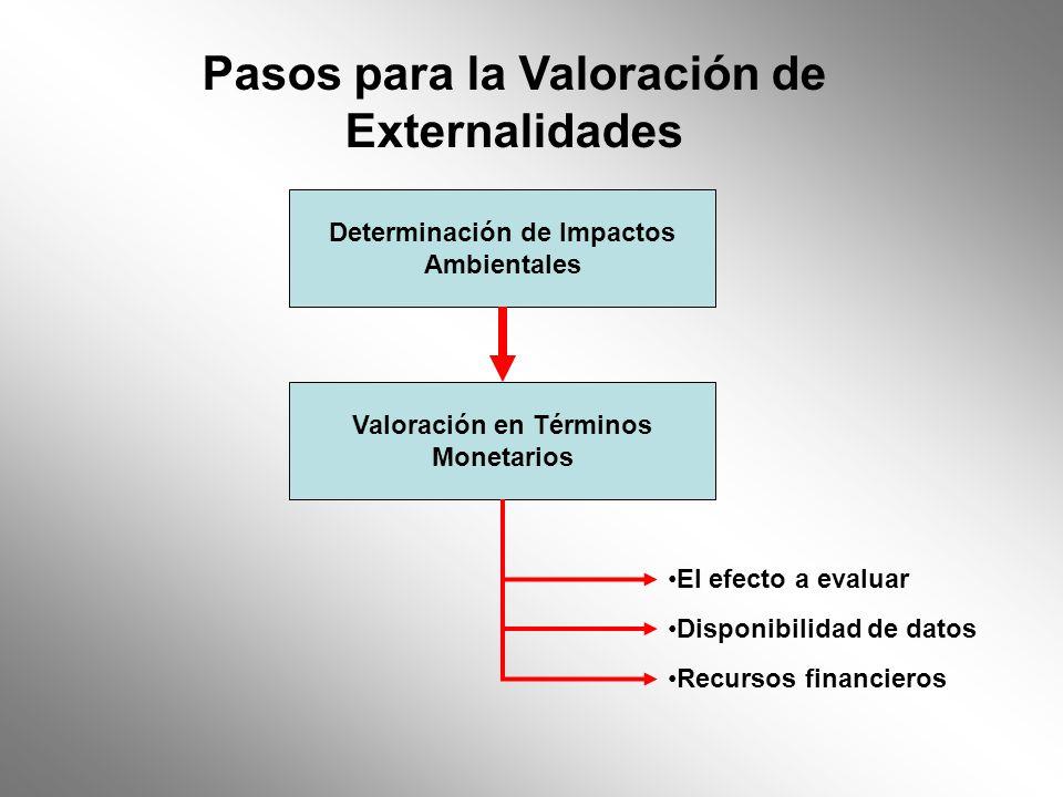 Pasos para la Valoración de Externalidades
