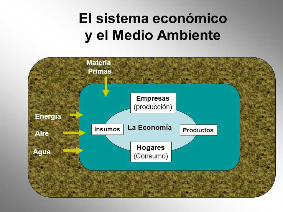 El sistema económico y el Medio Ambiente