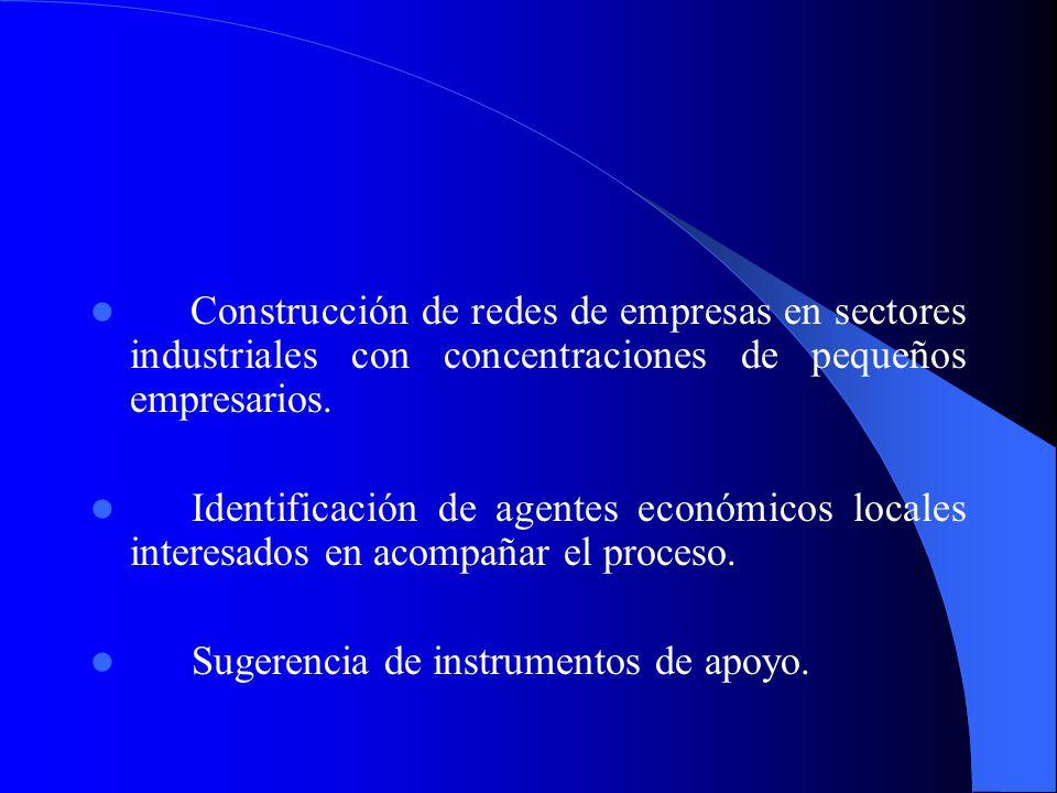 Construcción de redes de empresas en sectores industriales con concentraciones de pequeños empresarios.