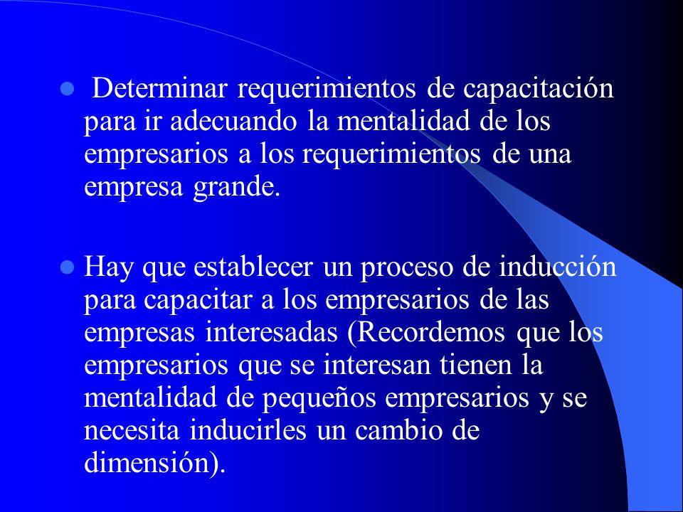 Determinar requerimientos de capacitación para ir adecuando la mentalidad de los empresarios a los requerimientos de una empresa grande.
