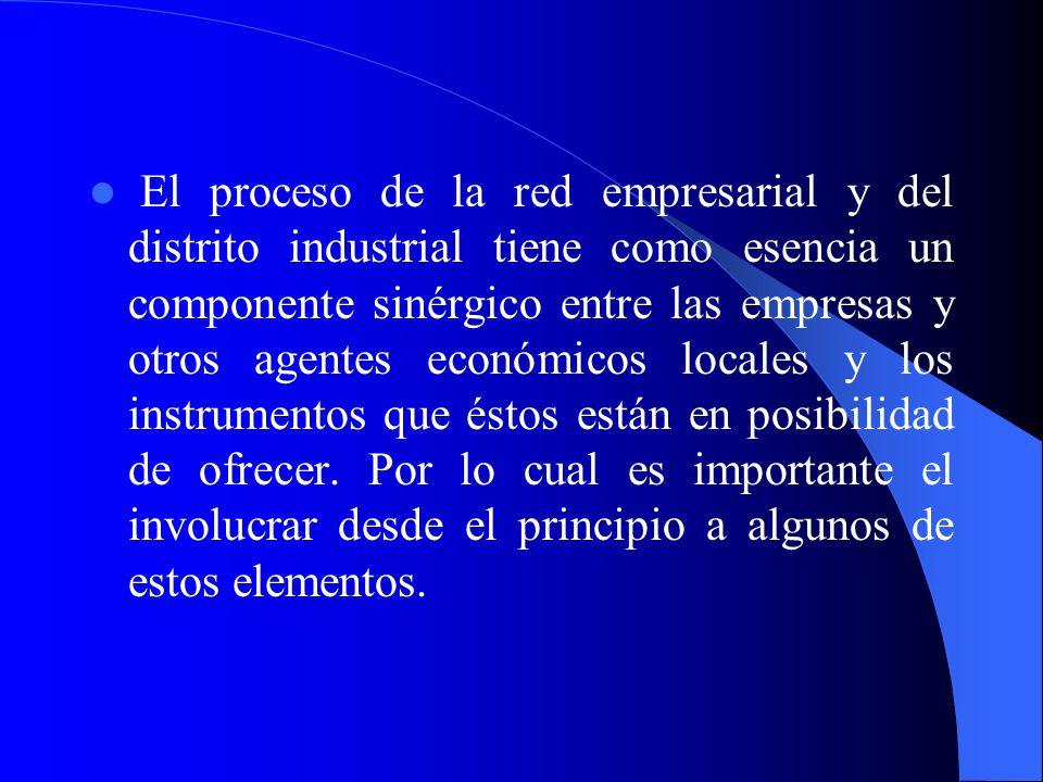 El proceso de la red empresarial y del distrito industrial tiene como esencia un componente sinérgico entre las empresas y otros agentes económicos locales y los instrumentos que éstos están en posibilidad de ofrecer.