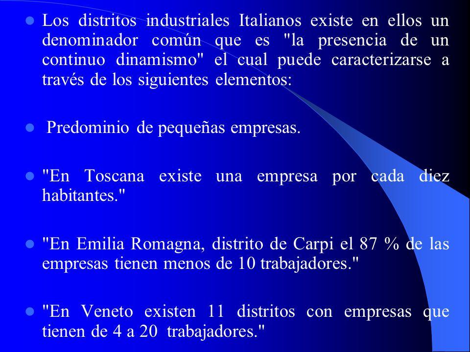 Los distritos industriales Italianos existe en ellos un denominador común que es la presencia de un continuo dinamismo el cual puede caracterizarse a través de los siguientes elementos: