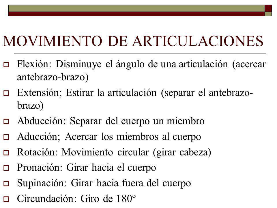 MOVIMIENTO DE ARTICULACIONES