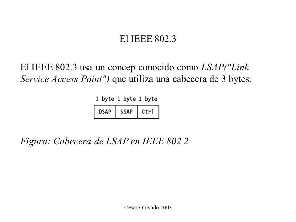 Figura: Cabecera de LSAP en IEEE 802.2