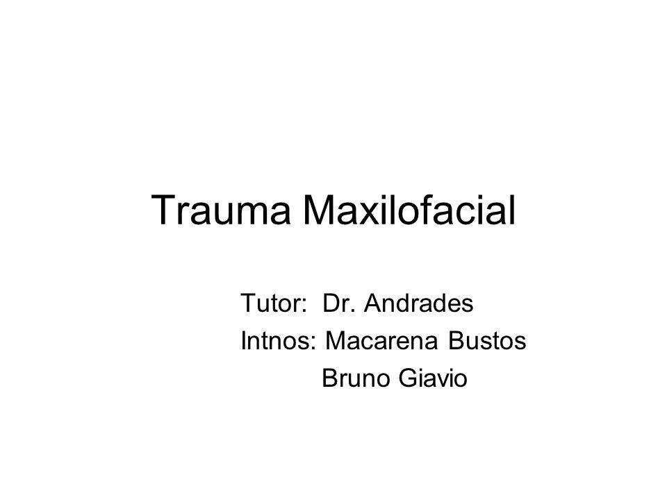 Tutor: Dr. Andrades Intnos: Macarena Bustos Bruno Giavio