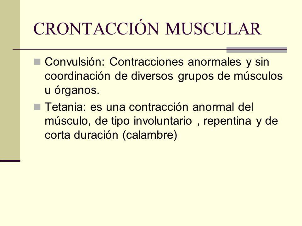 CRONTACCIÓN MUSCULAR Convulsión: Contracciones anormales y sin coordinación de diversos grupos de músculos u órganos.